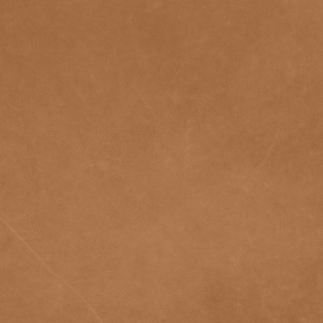 Dunes Camel 21004